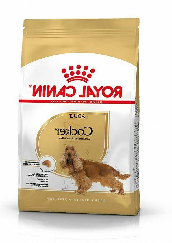 food for dogs adults from 12 months