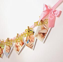 Tink Party Newborn to 12 Months Photo Banner | Big Pink Bows